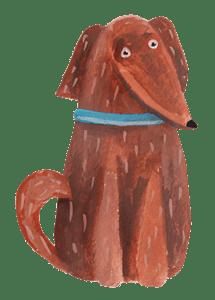 alimentazione-cane