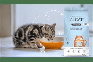 alimentazione-gatto-cucciolo